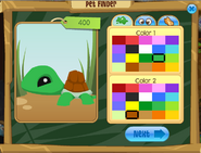 Pet Finder Turtle