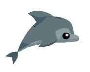 Dolphin aj