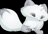 Arctic Fox Graphic