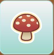 Jag Stamp mushroom