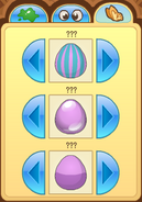 Pet-Egg Features-3