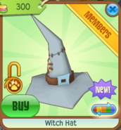 Witch Hat new grey