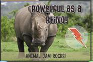 Rhinojag2
