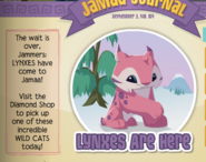 Jamaa-Journal Lynxes-Are-Here