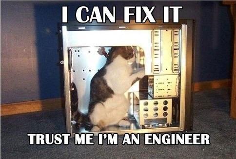 Image cat fixing computer engineerg animal jam wiki cat fixing computer engineerg sciox Image collections