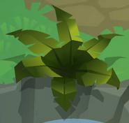Den Phantom-Fern Green