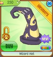 Wizard Hat purple