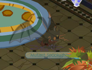 Spookyparty2015fogaftermath
