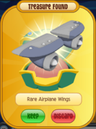 Rare Airplane Wings Blue