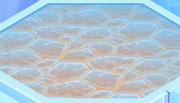 Winter-Palace Lava-Floor