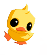 Pet Duck art stare