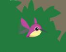 Pet Hummingbird-Email Artwork