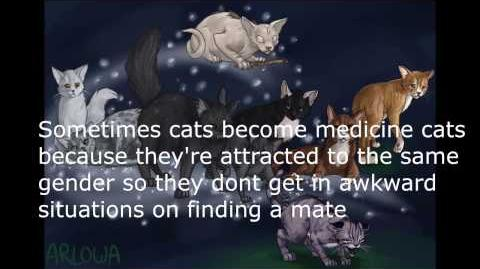 Warrior Cats Facts -2