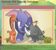 Animals Will Soon Be Traveling May 23rd