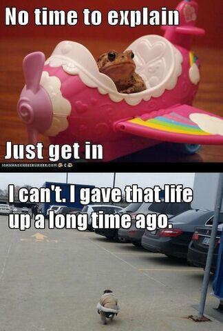 File:Hilarious ikea monkey memes 640 high 04.jpg
