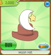 Moon Hat brown