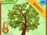 Epic Seasonal Tree