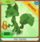 Fox Topiary Selected