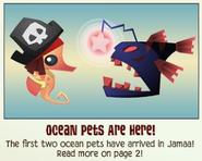 Jamaa-Journal Vol-047 Ocean-Pets-Are-here