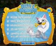 Membership Youre-a-Member Info