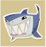 Shark World Oceans Day