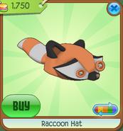 Raccoonhat02
