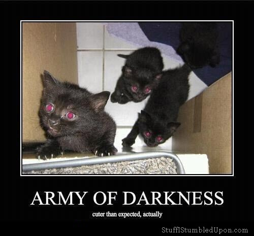 File:Army-of-Darkness-cuter-than-expected-actually-meme-evil-cat-meme thumb.jpg