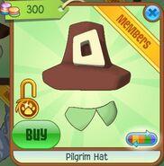 Pilgrim Hat (Rust)