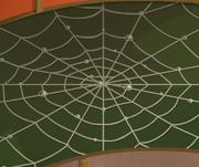 Mushroom-Hut Spiderweb-Floor