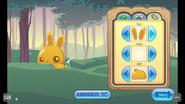 Pet-Golden-Bunny Features 2