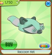 Raccoonhat04
