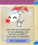 Pet reindeer jamaa journal