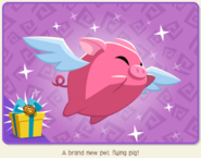 When Pigs Fly Bundle Pet Flying Pig