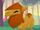 Pet Camel
