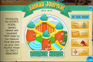 Bounce house den jamaa journal