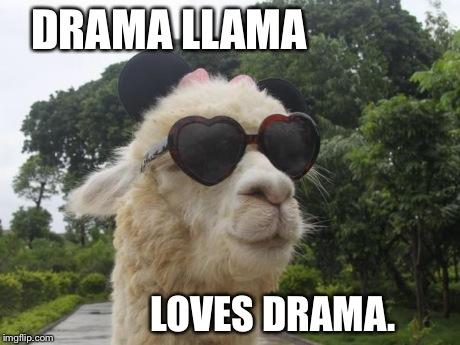 Dramatic_llama.jpg