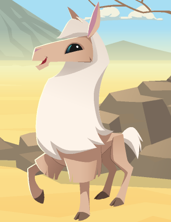 Llama animal jam wiki fandom powered by wikia - Animaljam wiki ...