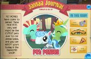 Pony jamaa
