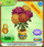 Chrysanthemum Bouquet 1