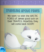 Arctic foxes have left