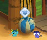Crystal-Sands Pet-Kitty-Adoption