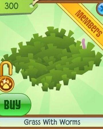 Grass With Worms Animal Jam Wiki Fandom