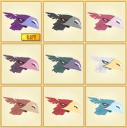 Eagle-Hat-Full-Set