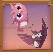 OWLS45773