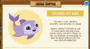 Dolphins are Back Jamaa Journal