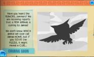Owl Image Default.