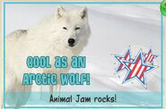 Cool as an Arctic Wolf JAG
