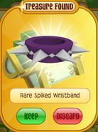 Lucky-Clovers Treasure-Epic-M Rare-Spiked-Wristband Long-Purple