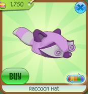 Raccoonhat06