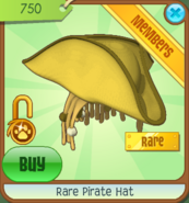 JMC Rare Pirate Hat